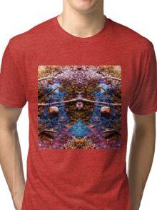 Reflecting Pool 4 Tri-blend T-Shirt