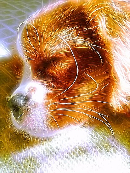 Electrifying Sleeping Puppy by daphsam