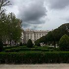 Royal Palace of Madrid by Michael Redbourn