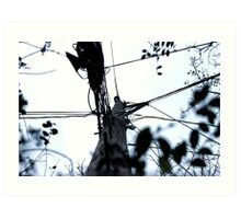 Under the Utility Pole Art Print