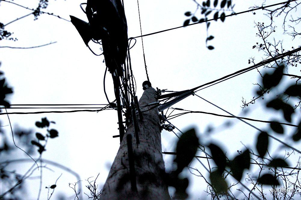 Under the Utility Pole by aprilann