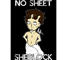 No sheet, Sherlock! Photographic Print