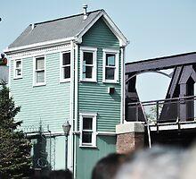 Chitown Homestead by schiggityschway