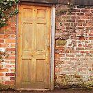Backstreet doorway by lauracronin