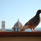 Florentine Scavenger by lauracronin