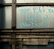 Take Back Your Love of Freedom by lauracronin