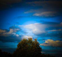 Blue Skies by Jeanne Peters