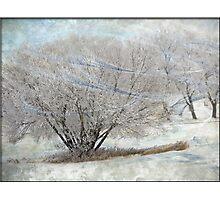 Prairie Winds Photographic Print