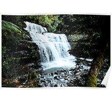 Liffy Falls near Deloraine Tasmania Poster