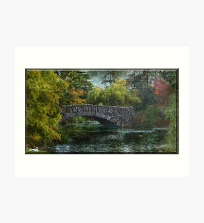 Rustic And Reliable Art Print
