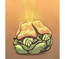 Pokemon - Venusaur Photographic Print