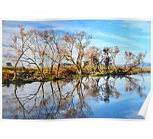 Morning on the South Esk River  Tasmania Poster