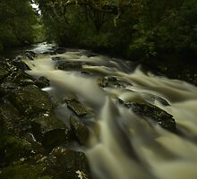 Pencil Creek Tasmania. by Warren  Patten
