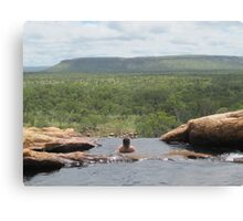 Valley of the Dinosaurs Canvas Print