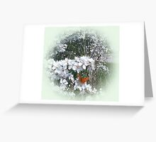 Spring in the Laval Greeting Card