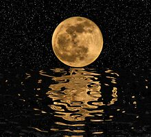 Moon Reflections by James Brotherton