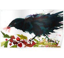 Christmas Crow Poster