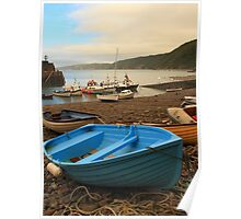Blue boat at Clovelly Poster