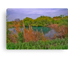 Almost a Watercolour of the Wetland Canvas Print