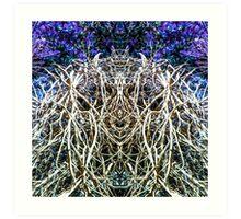 Dreamweaver 4 Art Print