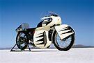 Triumph Thunderbird on the salt by Frank Kletschkus