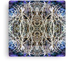 Dreamweaver 5 Canvas Print