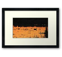 Sunset Swim Framed Print