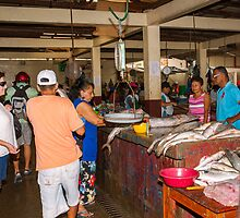 Fish Market Activity - Playas, Ecuador by Paul Wolf