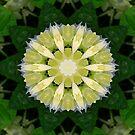 kaleidoscope 3 by Rue McDowell