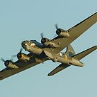 Boeing B17 Bomber Sally B by mlphoto