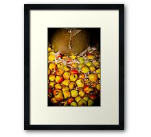 Washing English Cider Apples Framed Print