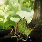 Dragonfriend by Yvonne Pfeifer