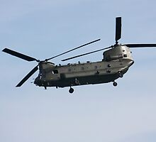 Chinook by SolariaHues
