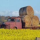 Hay Stack Truck by Leanne Christmas