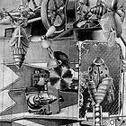 Metamorphis of a Ladybug. by - nawroski -