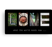What the world needs now... Canvas Print