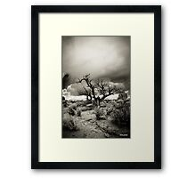 """The Speaking Tree"" Framed Print"