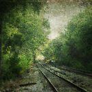 Shuqualak Tracks by Ginger  Barritt
