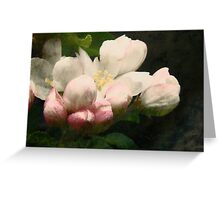 Vintage Blossoms Greeting Card