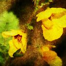 Yellow Wildflowers by Ginger  Barritt