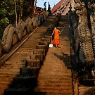 Monk Sweeping the Dragon Stairs by Duane Bigsby