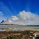 Bushfire by Ian Berry