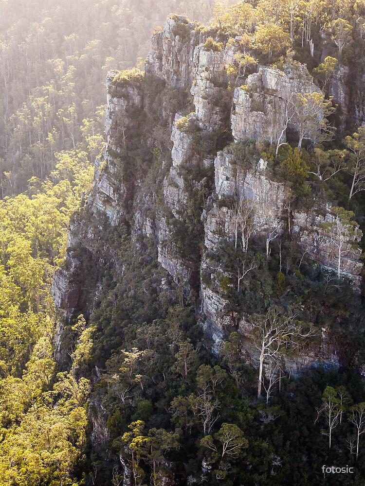 Alum Cliffs, Mole Creek, Tasmania, Australia by fotosic