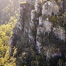 Alum Cliffs, Mole Creek, Tasmania, Australia by fotosic