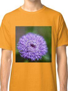 Beautiful bachelor's button flower Classic T-Shirt