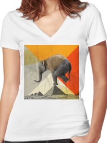 Balance of the Pyramids Women's Fitted V-Neck T-Shirt