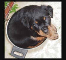 Female Rottweiler Puppy Curled In A Food Bowl Kids Tee
