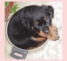 Female Rottweiler Puppy Curled In A Food Bowl Baby Tee