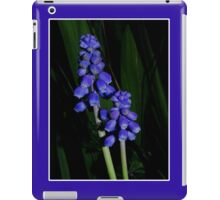 grape hyacinth case iPad Case/Skin