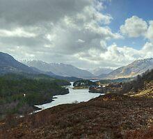 Glen Affric by Jamie  Green